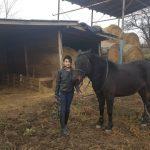 Kislány áll a barna lova mellett