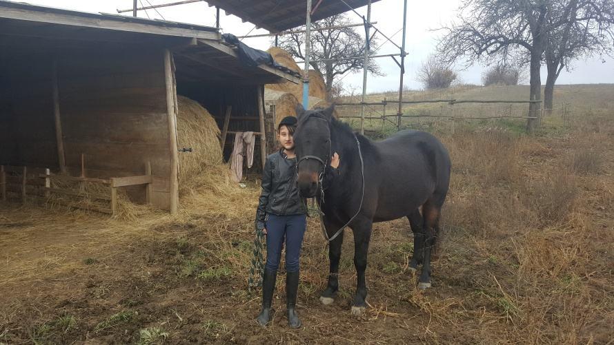 Kislány és a lova