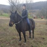 Egy kislány ül a lovon