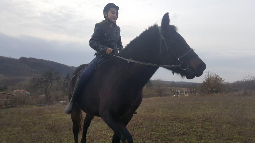 Kislány lovagol